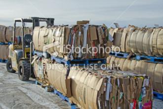 Cardboard Baling